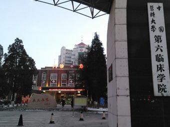 中国医科大学第六临床学院
