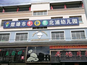 楚雄市七色花北浦幼儿园(胜景路)