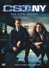 犯罪现场调查:纽约 第一季