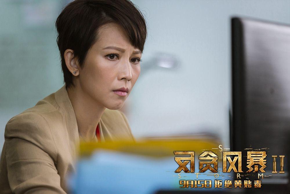《反贪风暴2》 剧情, 演员, 导演, 获奖,s storm剧照