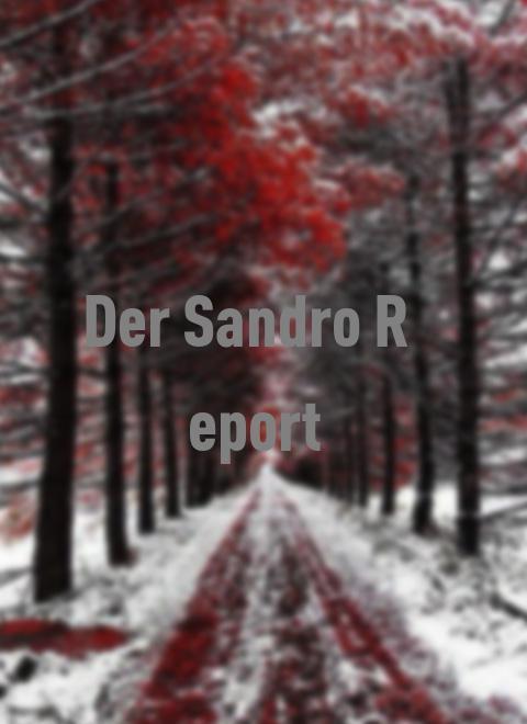 Der Sandro-Report