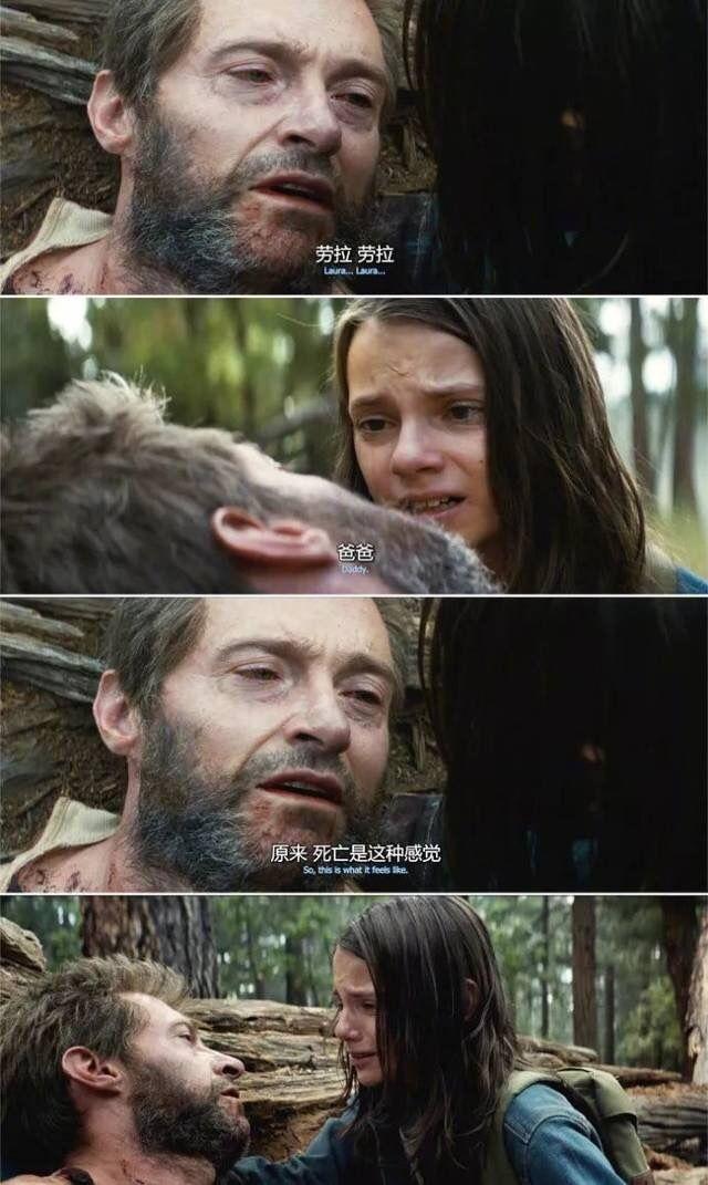 """狼叔、勇度、""""喵喵锤"""",2017离我们而去的银幕角色,虐到不行"""