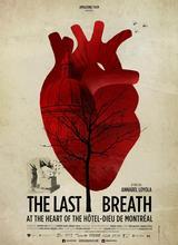最后的呼吸_下载
