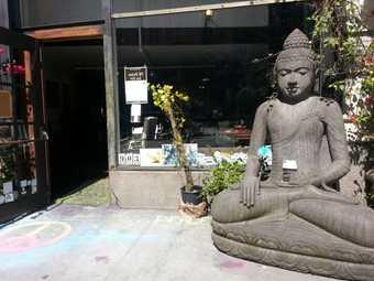 Peace Yoga Gallery