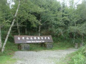 Taiwan Beech Trail