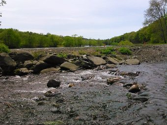 Kittatinny Riverbeach Campsites
