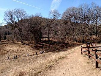 Oak Glen Preserve