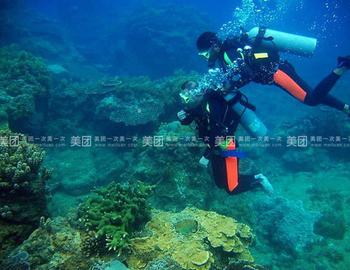 【大东海度假区】三亚畅海游游艇潜水俱乐部套票(成人票)-美团