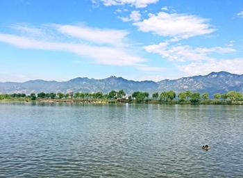 【康庄】野鸭湖国家湿地公园门票成人票-美团