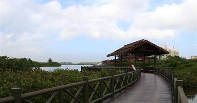 【澄迈县】富力红树湾湿地公园-美团