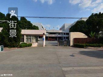 泽国第三中学