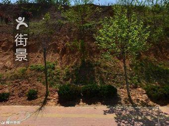 卧龙山颐灵园公墓