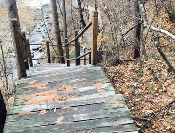 【沈阳出发】和睦国家森林公园纯玩1日跟团游*踏青春游,森林氧吧-美团