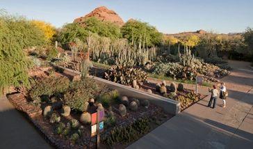 【乌鲁木齐出发】沙漠植物园、葡萄沟景区、火焰山纯玩1日跟团游*赠送民俗家访-美团
