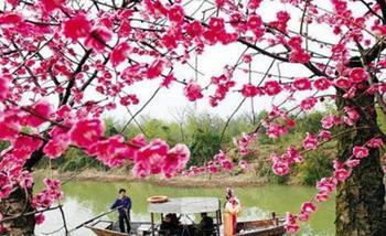 【杭州出发】长兴太湖、林城红梅节纯玩1日跟团游*观万亩梅园,赏湖风光-美团