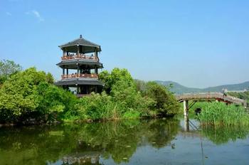 【下渚湖】下渚湖湿地门票(含船票)+熊猫馆门票(成人票)-美团