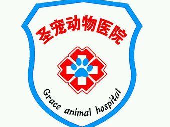 圣宠动物医院