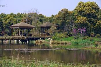 【三水区】三水森林公园孔圣园门票+鳄鱼湖(成人票)-美团