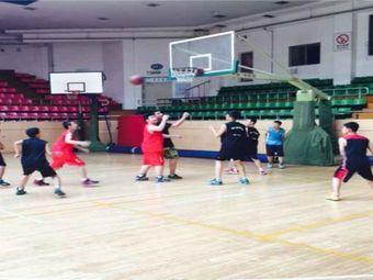 奥鲨客篮球训练营
