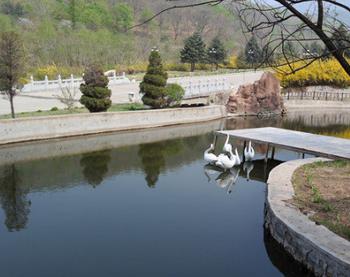 【长春出发】五龙山风景区、獐岛、鸭绿江中朝界河游船3日跟团游-美团