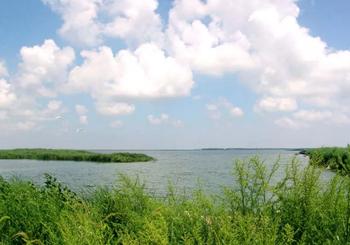【溱潼】溱湖国家湿地公园套票(成人票)-美团