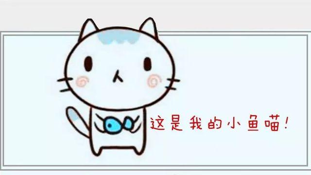 手账| 简笔画可爱小猫咪