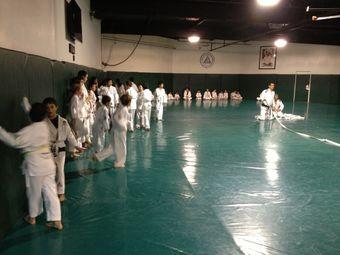 Gracie Jiu-Jitsu Academy