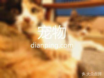 闵行区犬类免疫登记处