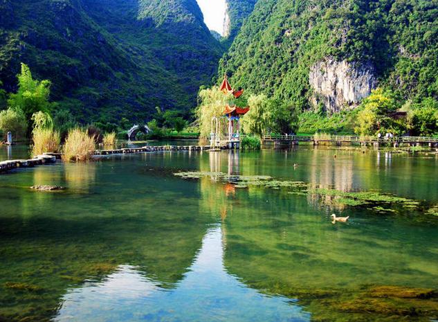 8 黑玫瑰zjlily:风景区位于 广西 百色 市 靖西 县.