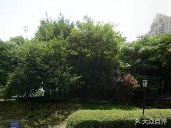 太平桥公园