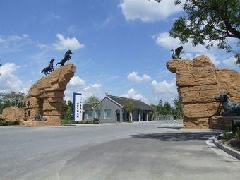 泰州田园牧歌景区