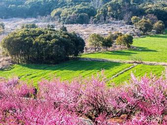 香山风景区