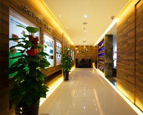 20万以上140平米现代简约风格走廊设计图