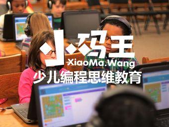 小码王少儿编程思维教育(龙湖源著校区)
