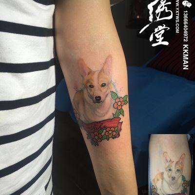 柯基犬纹身图-大众点评纹身图案大全