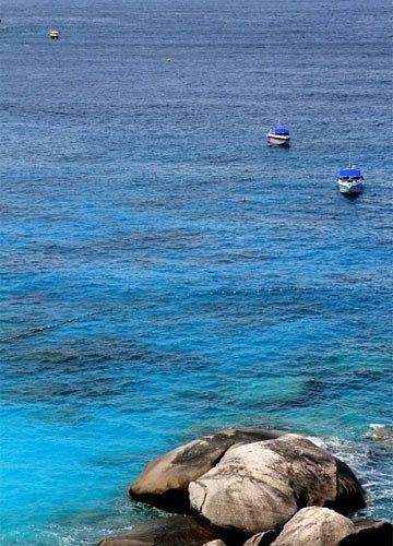 蜜月旅游推荐:绚丽珊瑚与热带鱼的世界