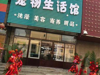 咖米宠物生活馆