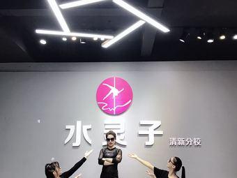 国际灵子舞蹈培训机构(清远清新分店)