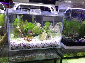 水生缘水族馆