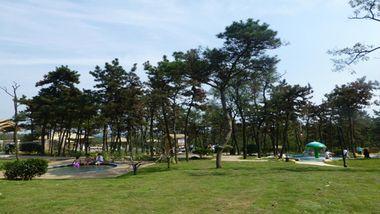 【连云港等】连云港东海森林温泉度假酒店1晚+双人森林温泉+双人森林公园+双早-美团