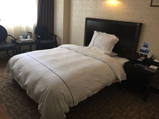 凤凰大酒店
