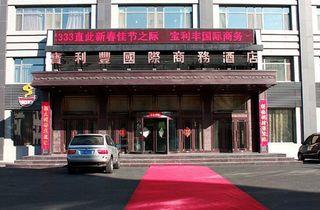 大庆宝利丰国际商务酒店(客运枢纽站店)