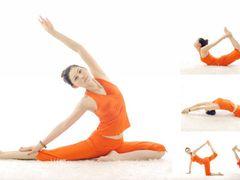 菩提瑜伽的图片