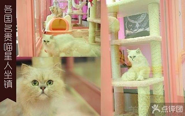 王子公主奇遇记主题KTV(金玉兰广场店)