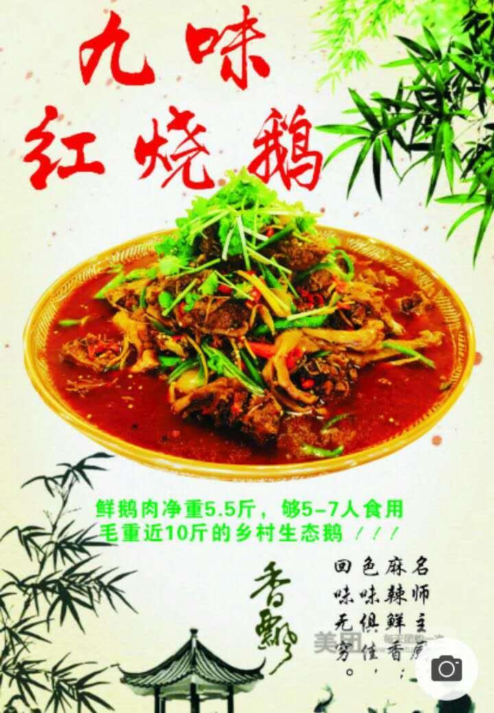 517红烧鸭.鹅 祖传秘方民间美食