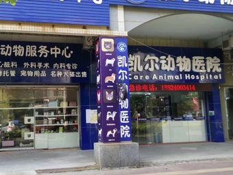 凯尔动物医院