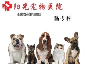 阳光宠物医院•猫专科