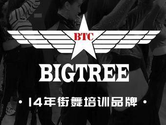 BIGTREE舞蹈工作室(平江万达店)