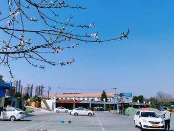军杰驾校(海亮校区)