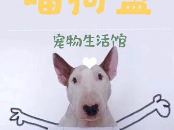 喵狗盟宠物生活馆